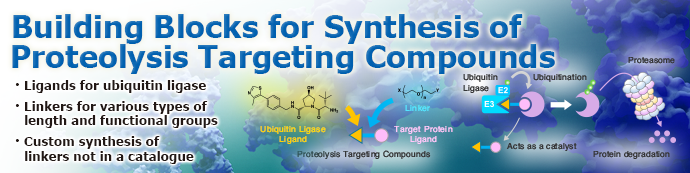 Building Blocks for Synthesis of Proteolysis Targeting Compounds