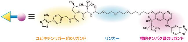 標的タンパク質分解誘導剤の例