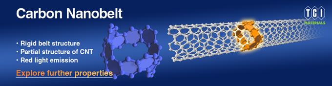 Carbon Nanobelt