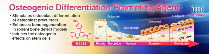 Osteogenic Differentiation Promoting Agent