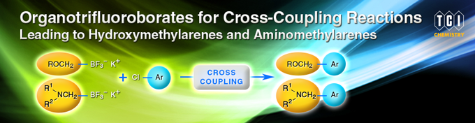 Organotrifluoroborates for Cross Coupling Reactions Leading to Hydroxymethylarenes and Aminomethylarenes