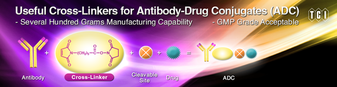 Useful Cross-Linkers for Antibody-Drug Conjugates (ADC)