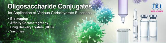 Oligosaccharide Conjugates