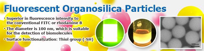Fluorescent Organosilica Nanoparticles