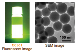 Fluorescent image and SEM image of Fluorescent Organosilica Particle