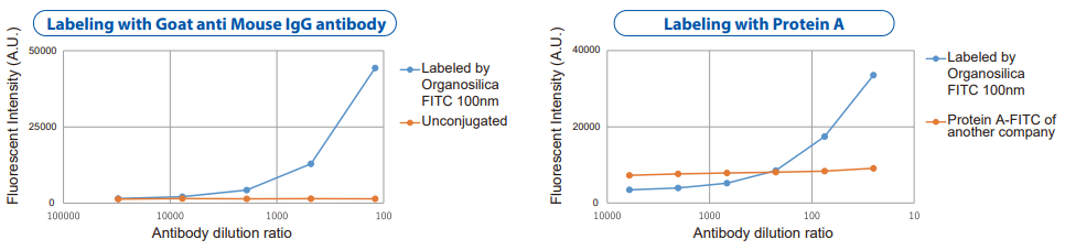 Analyses of Fluorescent Organosilica Particle-labeled antibody