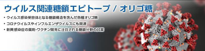 ウイルス関連糖鎖エピトープ(ウイルス関連オリゴ糖)