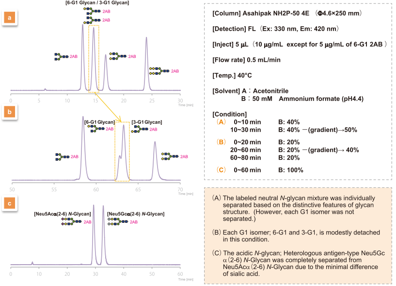 HPLC analyses of Labeled N-Glycans
