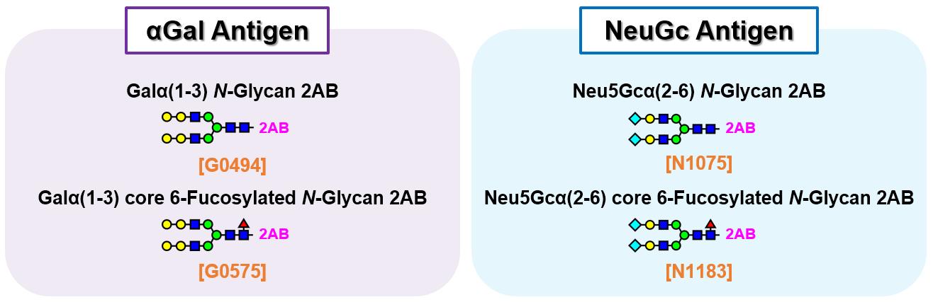 Non-human Type Glyco-epitopes (2-AB labeled)