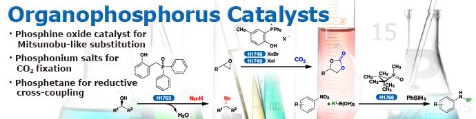 Organophosphorus Catalysts