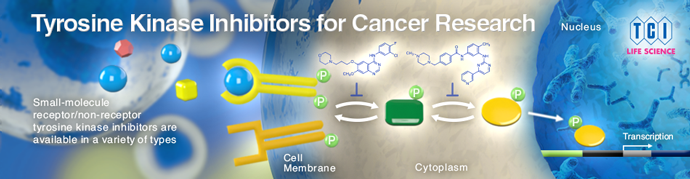 Tyrosine Kinase Inhibitors for Cancer Research