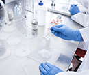 Chemical R&D, Contract Research and Manufacturing