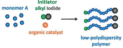The scheme of living radical polymerization