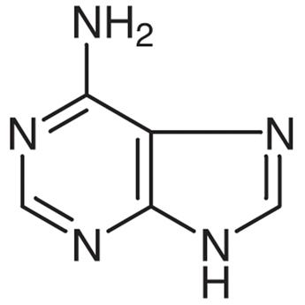 Adenine 73-24-5 | TCI Chemicals (India) Pvt. Ltd.