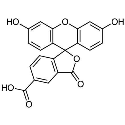 febrofid cu vene varicoase de la vene varicoase ciorapi pot fi purtate