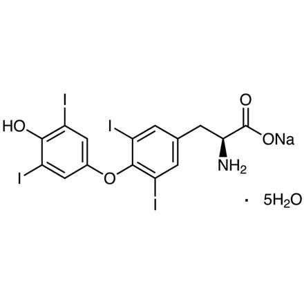 L Thyroxine Sodium Salt 55 03 8 Tokyo Chemical Industry Co Ltd